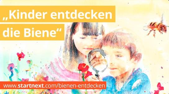 Thumbnail_Bienen_endecken